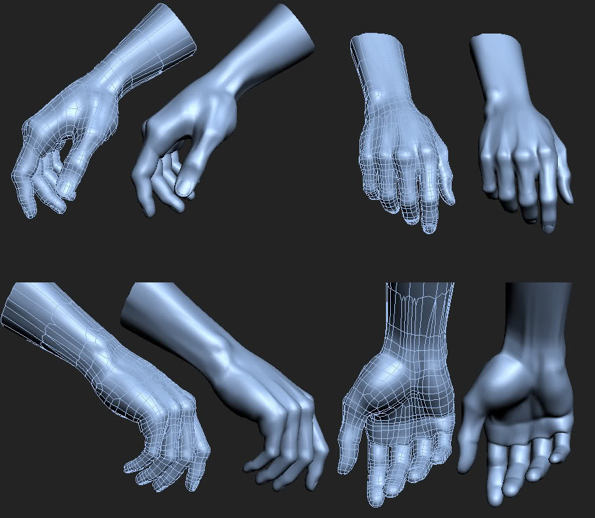 Limb Topology - polycount